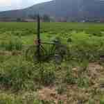 armado de bicicletas - arma tu bici - opiniones 2